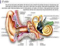 Las tecnologías auditivas podrían desempeñar un papel importante en el retraso de la demencia